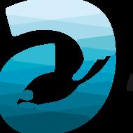 organisatie logo A Seal Zeehondenopvang  Stellendam